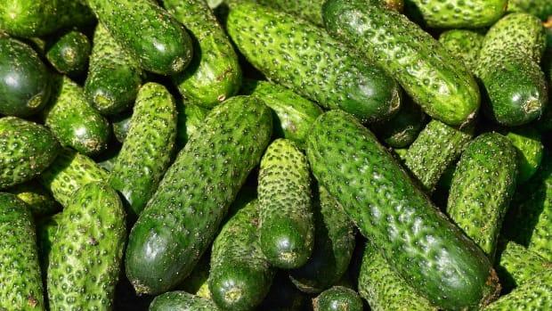 cucumbers-2806930_1280