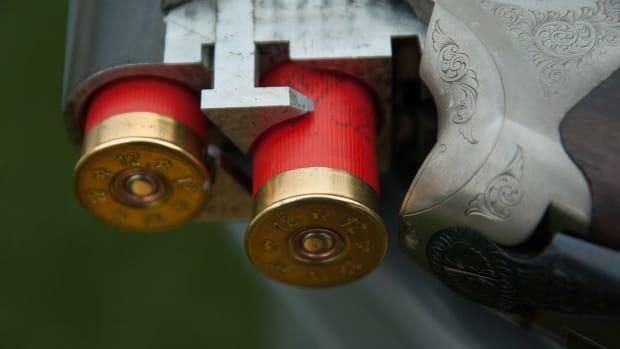 gun-1761235_1280