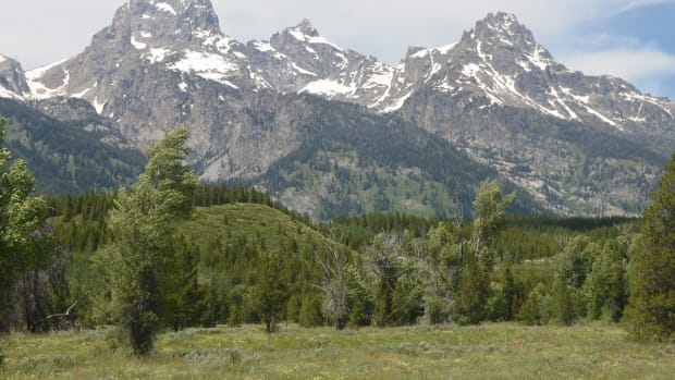 grand-teton-national-park-2322095_1280
