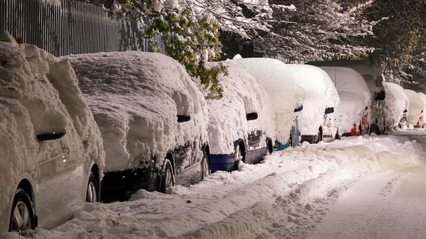 Snow-covered cars.