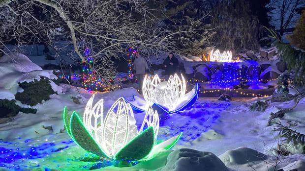 arboretum lights