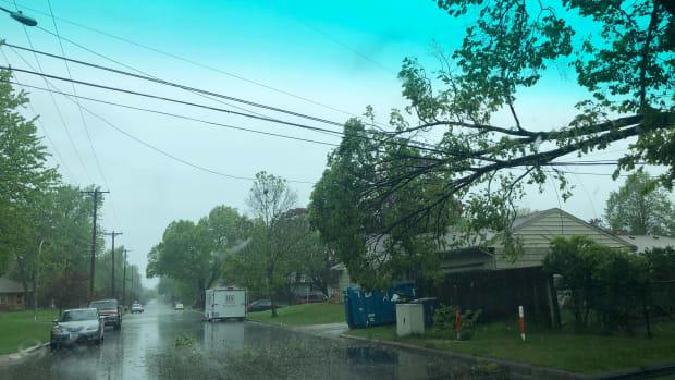 power line, tree down, damage, rain