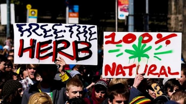 legalize weed sign crop