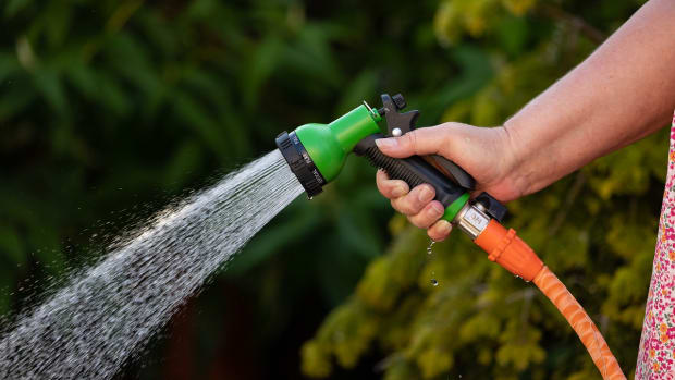 Pixabay - hose garden sprayer