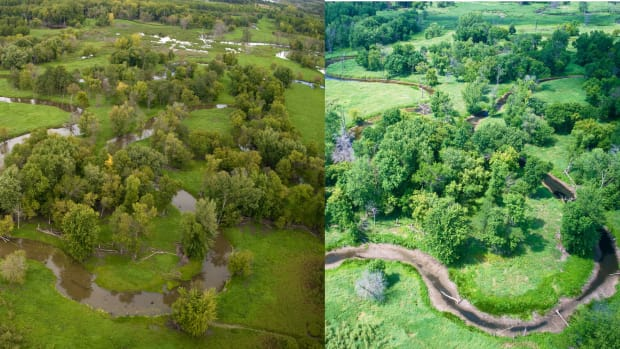 MN River backwaters 2019 (left) and 2021 (right)