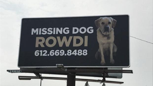 rowdi billboard