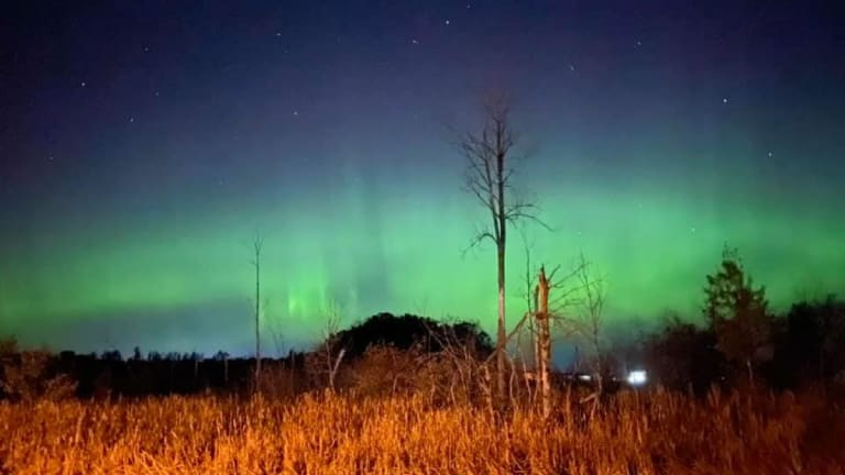 Pictures: Skywatchers treated to spectacular northern lights show in Minnesota