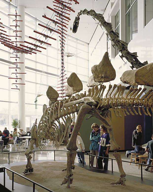 science-museum-of-minnesota