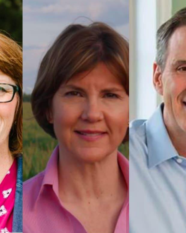 Candidates governor johnson walz