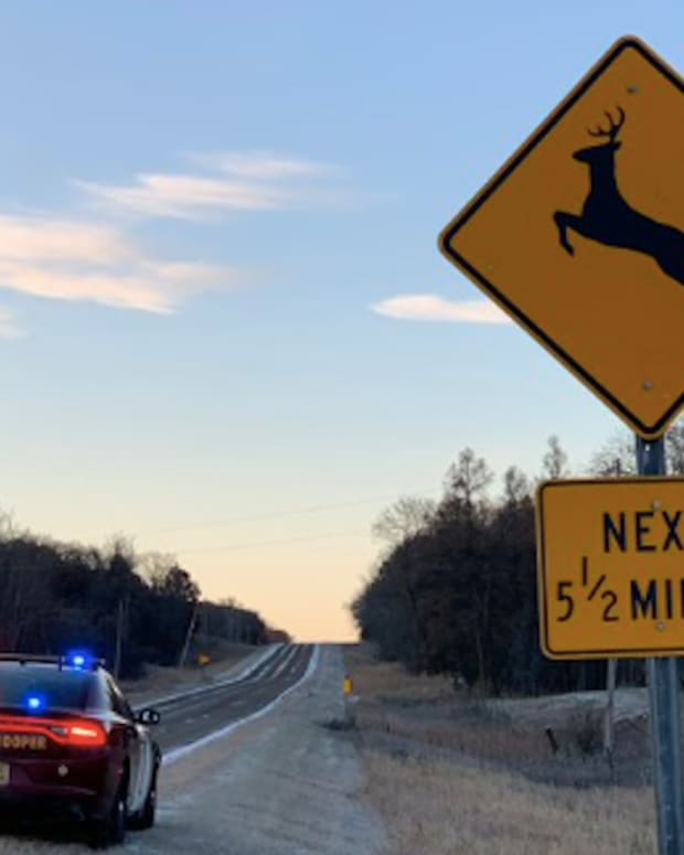 Beware deer.