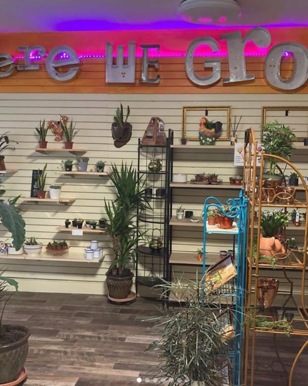 here we grow store