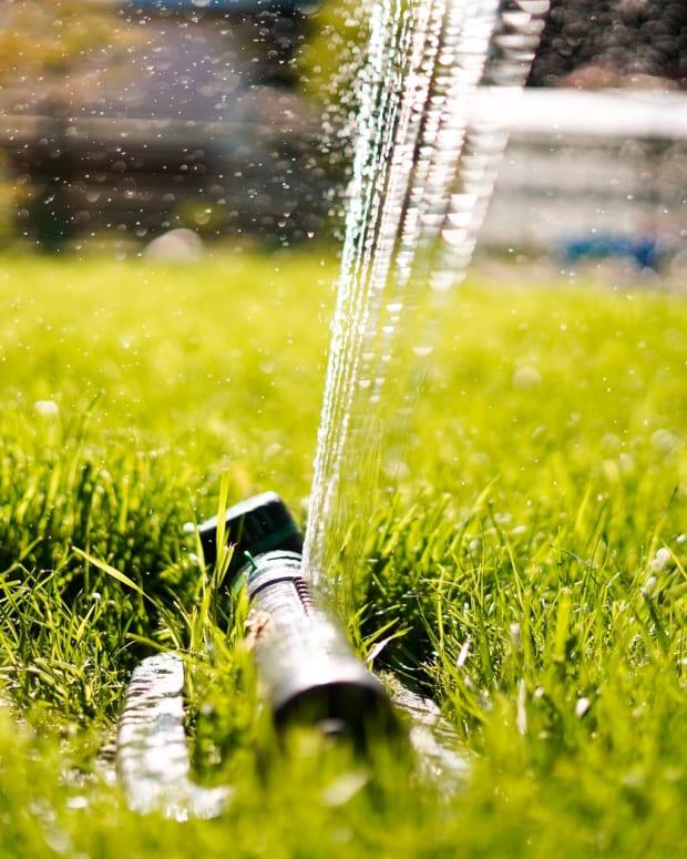 sprinkler water