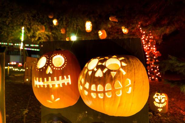 2017-10-13 Pumpkin Nights-Darin Kamnetz-150