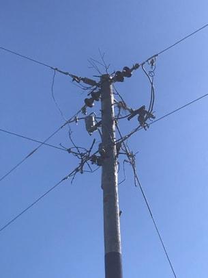Osprey Nest on Power Pole