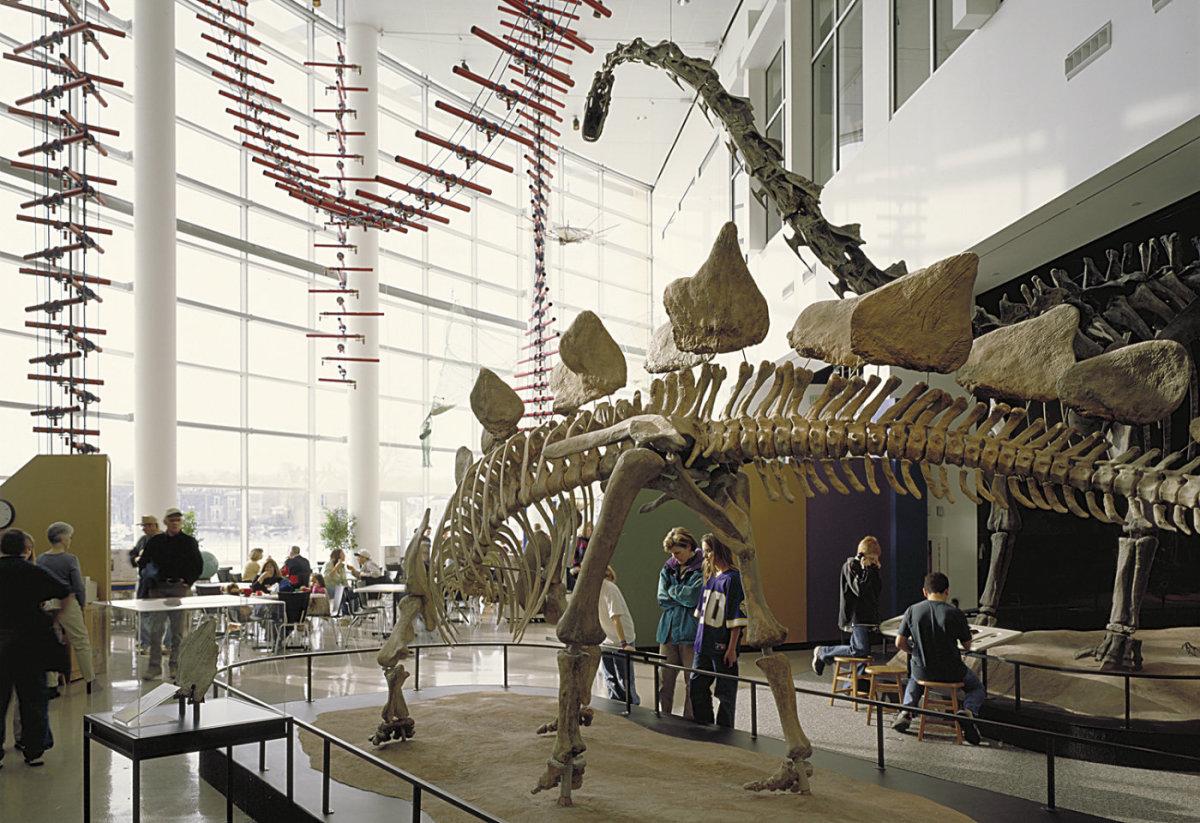 science-museum-of-minnesota