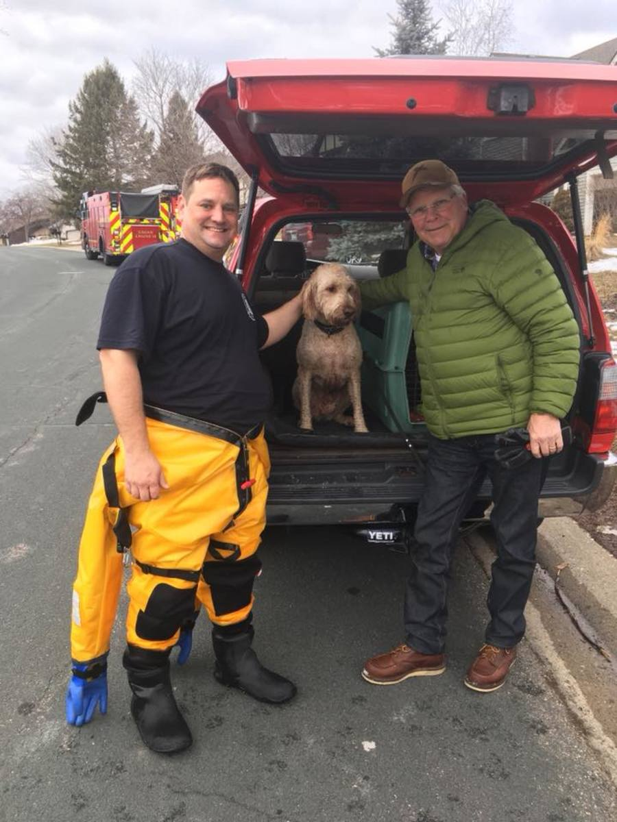 Eagan dog rescue