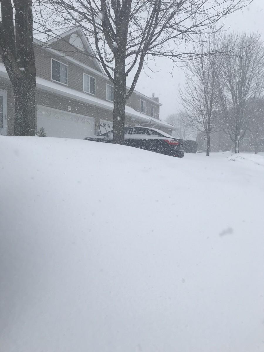 Snow, Circle Pines