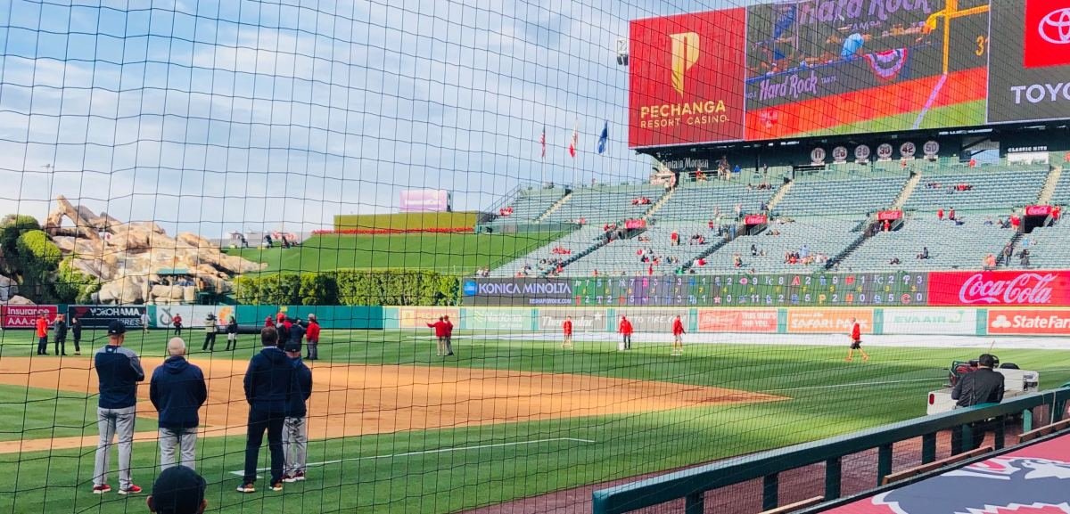 The grounds crew squeegees the outfield grass at Angels Stadium.