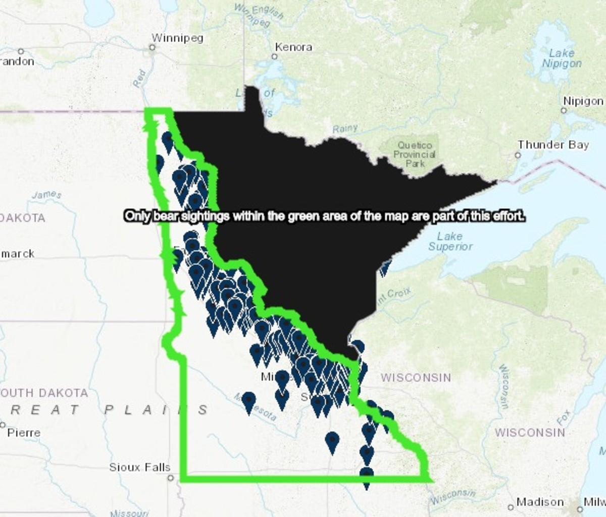 Bear sightings inside the green box are part of a DNR study. Areas in black, which woudl include Fosston, are where bears are more commonly seen.