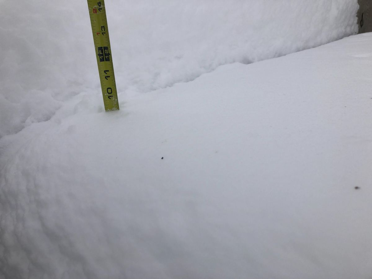 snow, tape measure