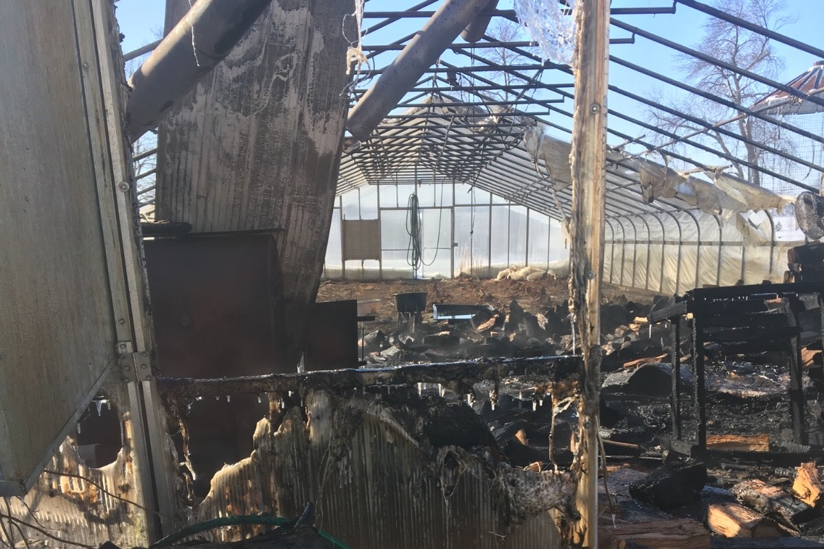 The charred remains inside the greenhouse.