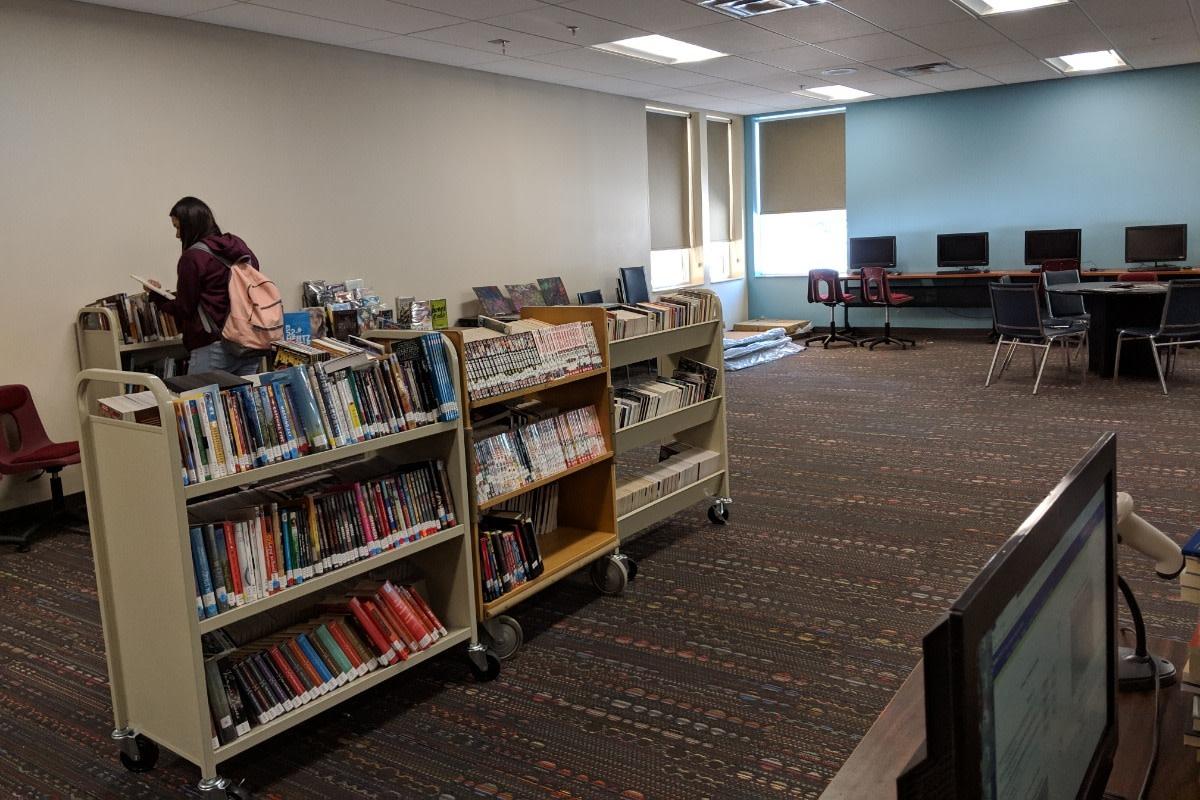 Bug-O-Nay-Ge-Shig school library