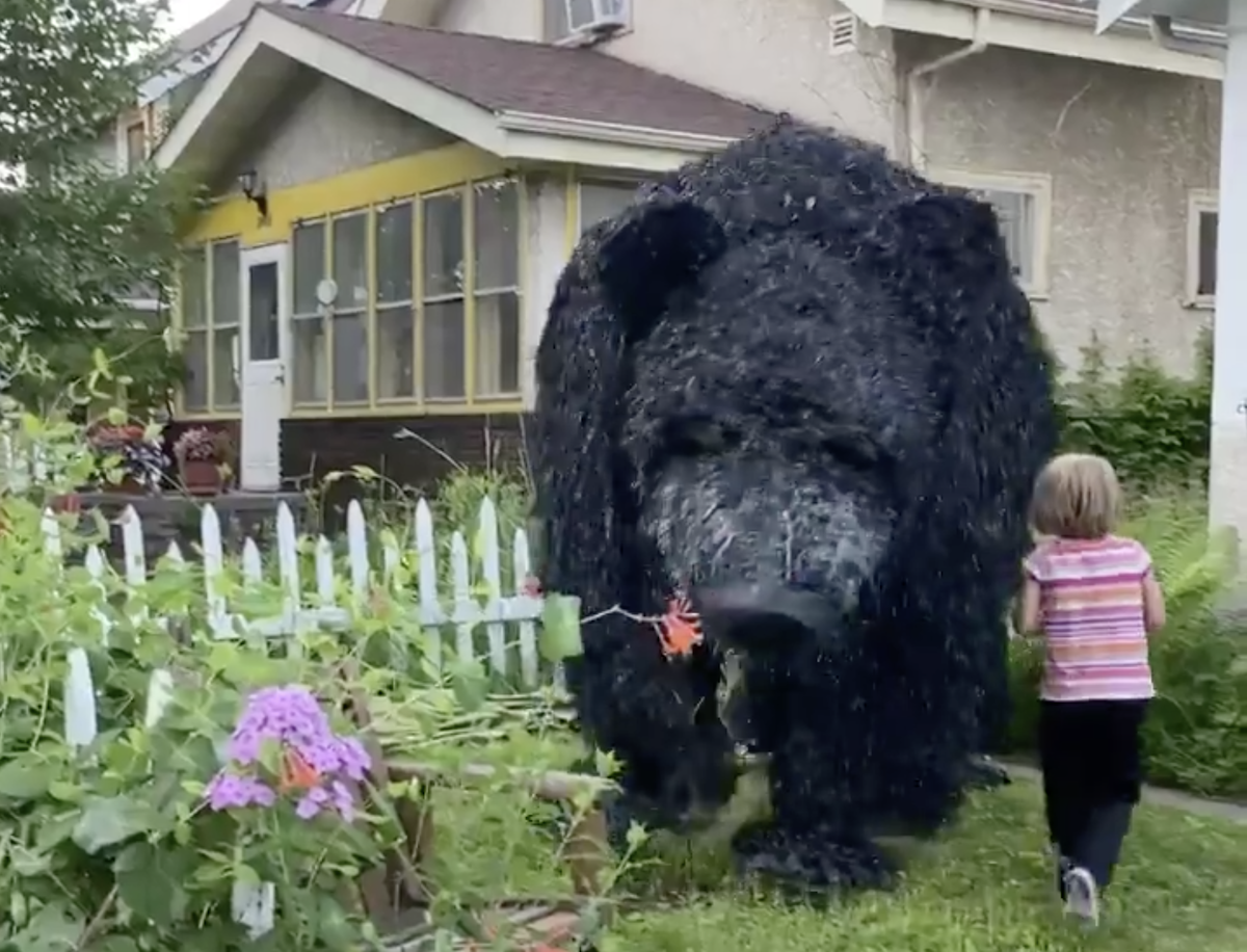dancing bear puppet