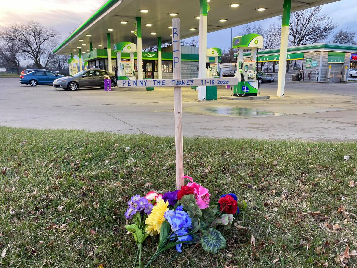 Bloomington resident Buddy Michaelson created a memorial at one of Penny's hangouts.