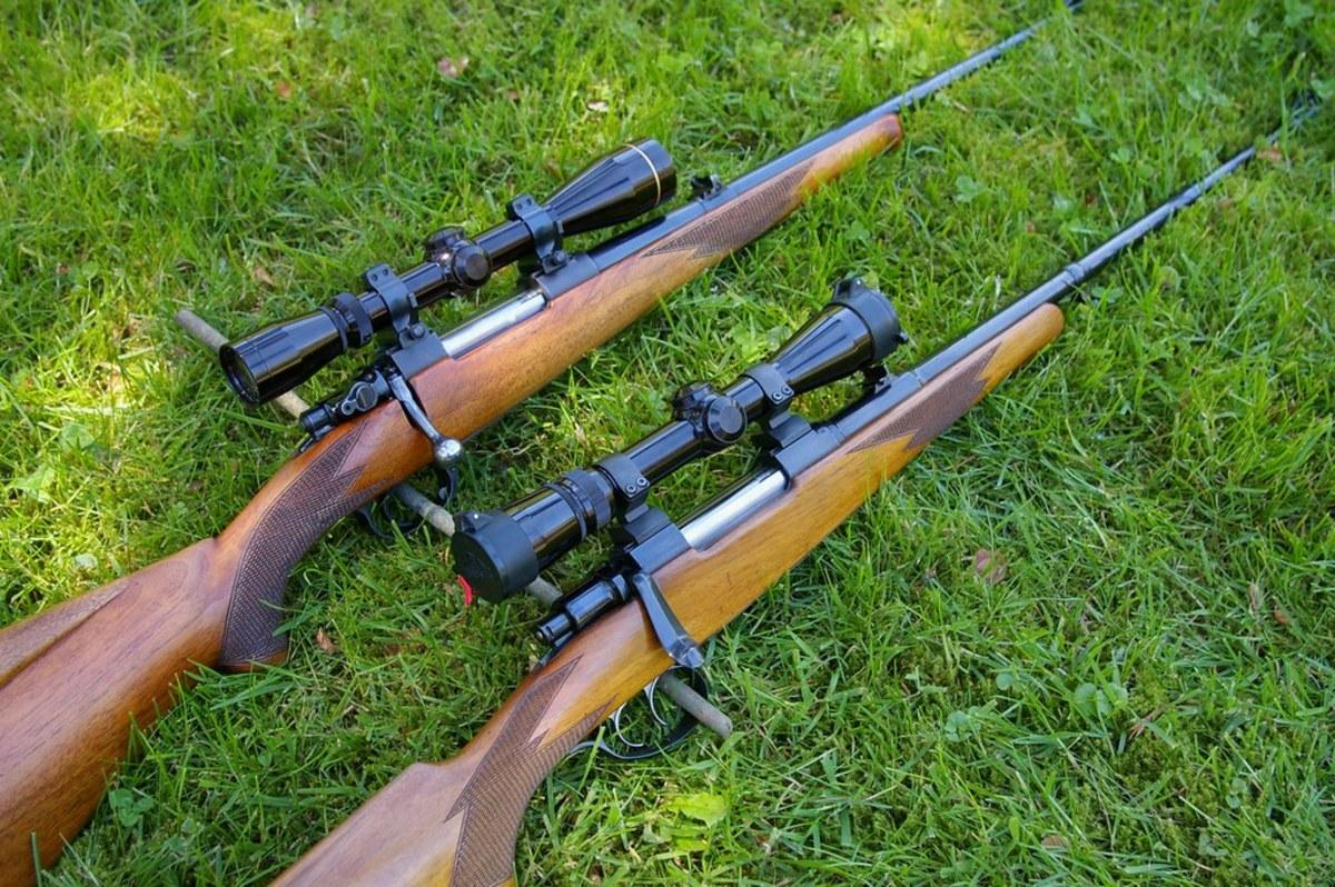 guns, hunting