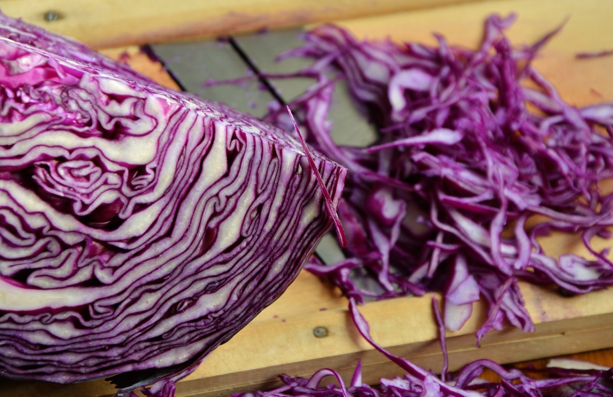 red-cabbage-1931731_1280