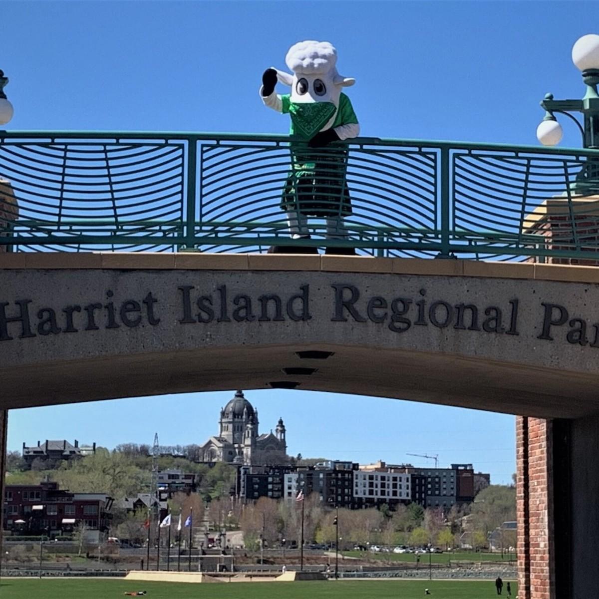 The Irish Fair of Minnesota's mascot wearing a face covering during the coronavirus pandemic.