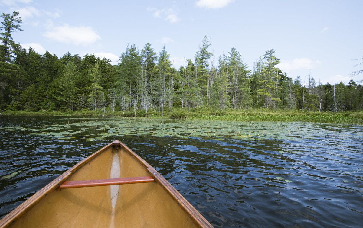 Canoe on lake.