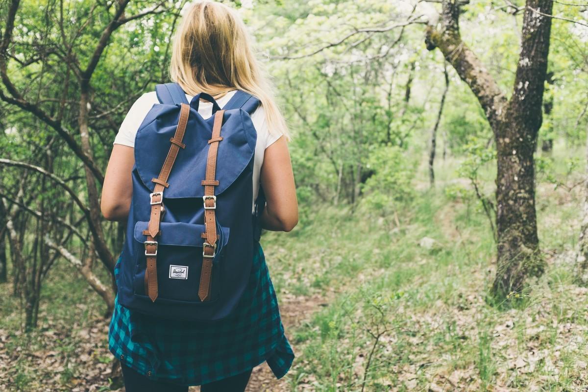 Pixabay - hiker forest woods warm