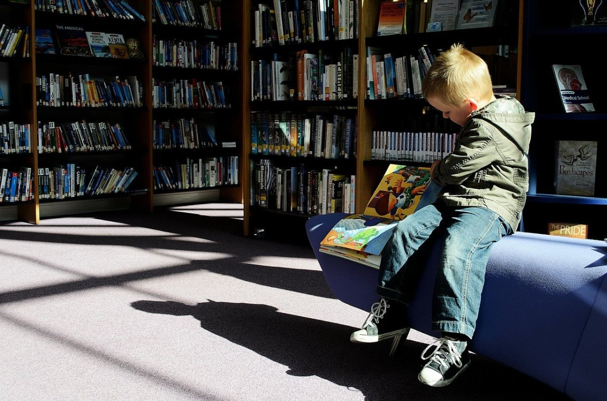 Pixabay - library child
