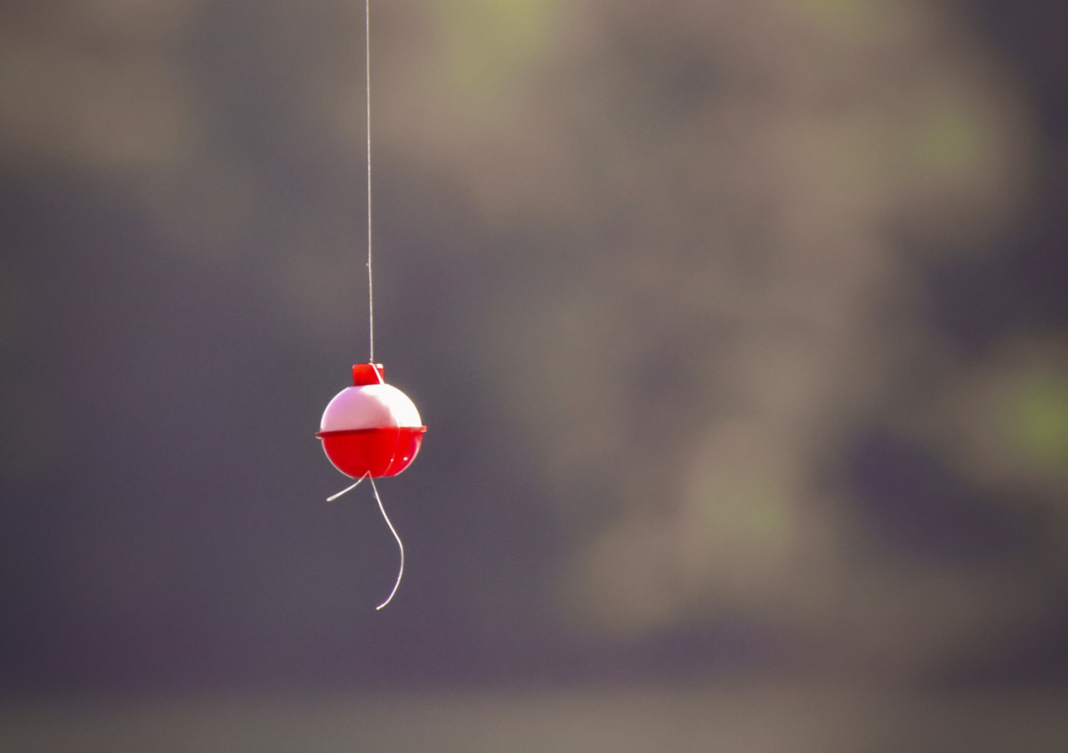Pexels - fishing bobber - CROP