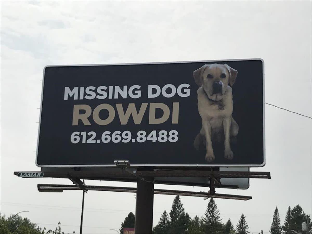 Cory Carlson recently paid for a billboard in hopes of finding his beloved dog Rowdi.