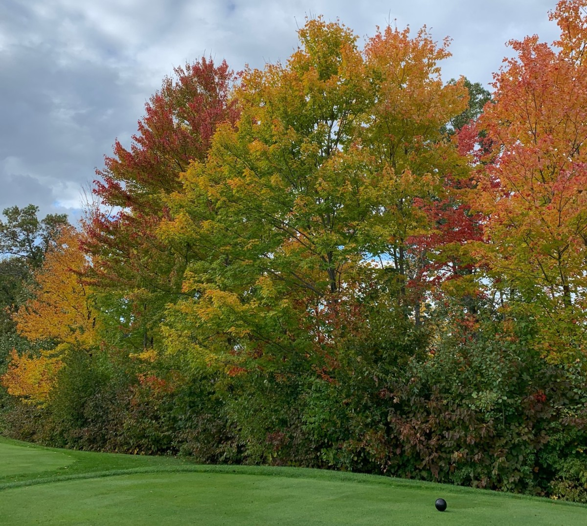 Fall colors on Oct. 6, 2019, in the Brainerd Lakes Area.