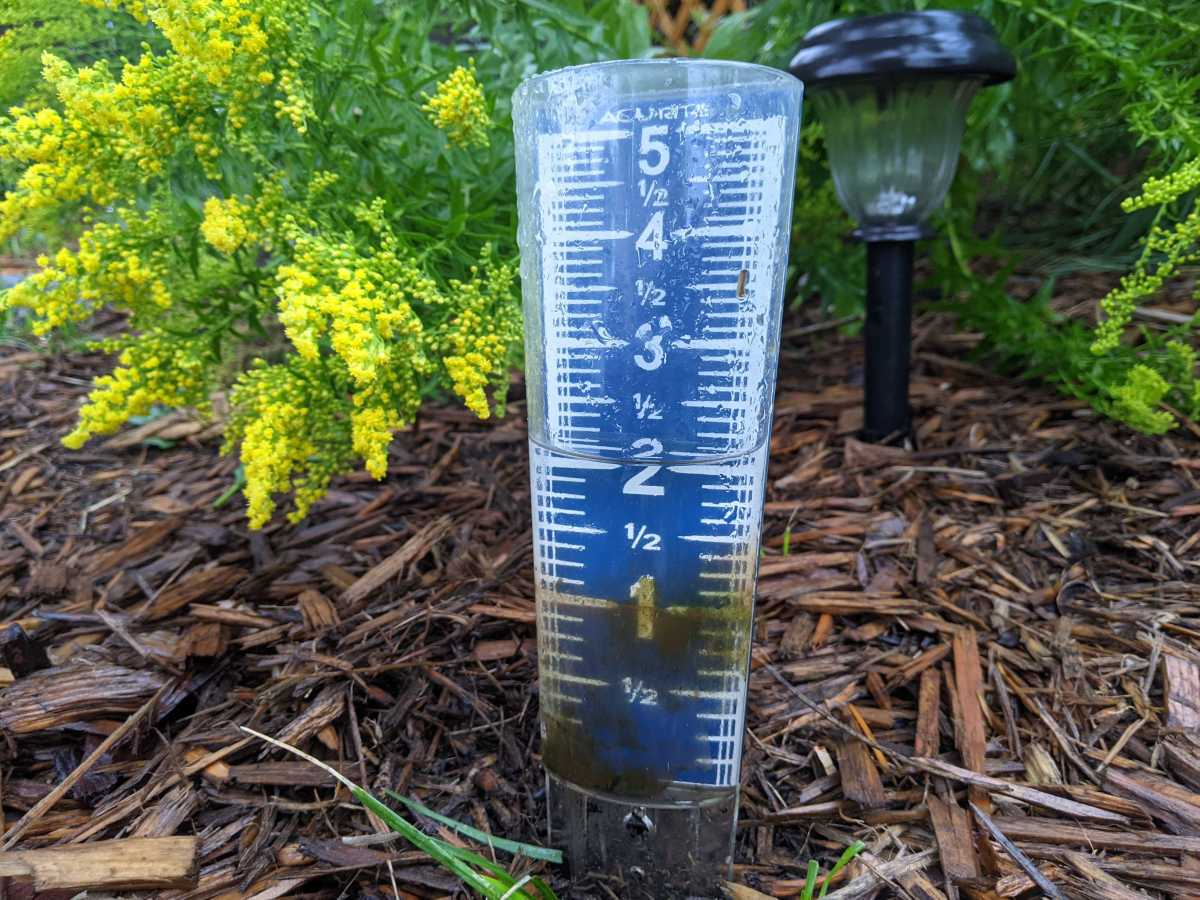 rain, rain gauge