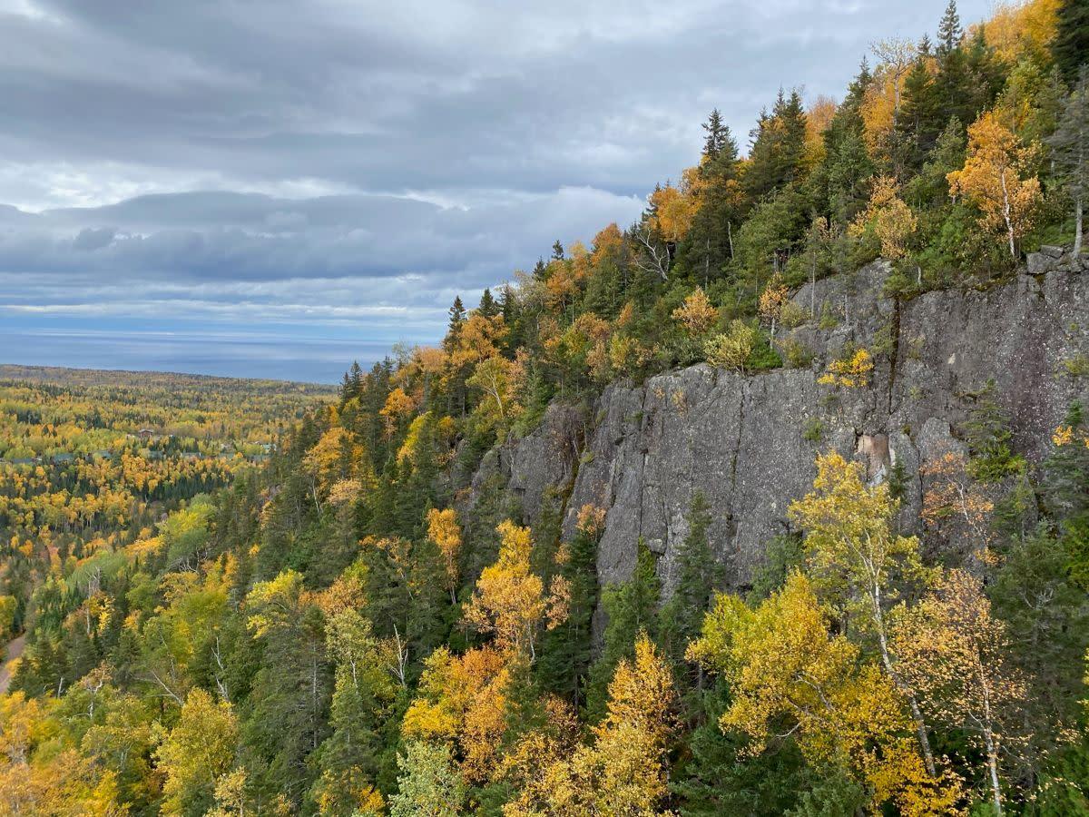 Fall colors in Lutsen, 2020